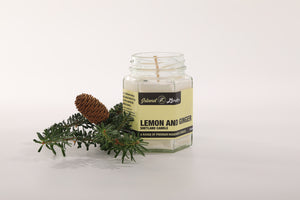 Lemon and Ginger Candle (110ml)