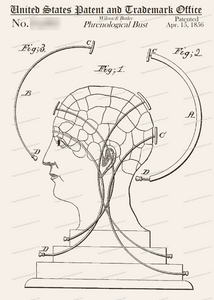 CARD-281: Phrenological Bust - Patent Press™