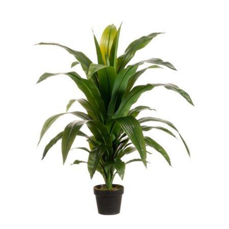 https://www.ebay.com/sch/i.html?_nkw=Pack+of+2+Potted+Artificial+Tropical+Green+Dracaena+Fragans+Plants+42+&_sacat=0