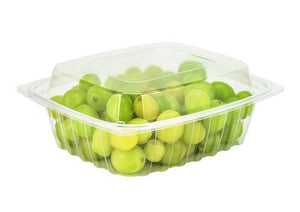 https://www.ebay.com/sch/i.html?_nkw=Dart+C24Der+24+Ounce+Clearpac+Clear+Rectangular+Plastic+Container+With+Clear+Dome+Lid+Take+Out+Deli+Fruit+Food+Disposable+Containers+100+Pack+Of+2+&_sacat=0&_dmd=2