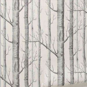 Birch Forest - Aster & Birch
