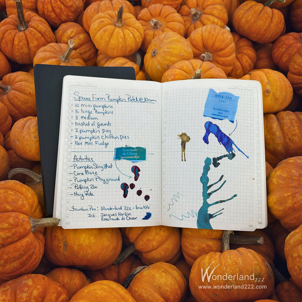 Pumpkins at Halloween on Tomoe River Paper Planners and Notebooks by Wonderland 222.  Fountain pen friendly