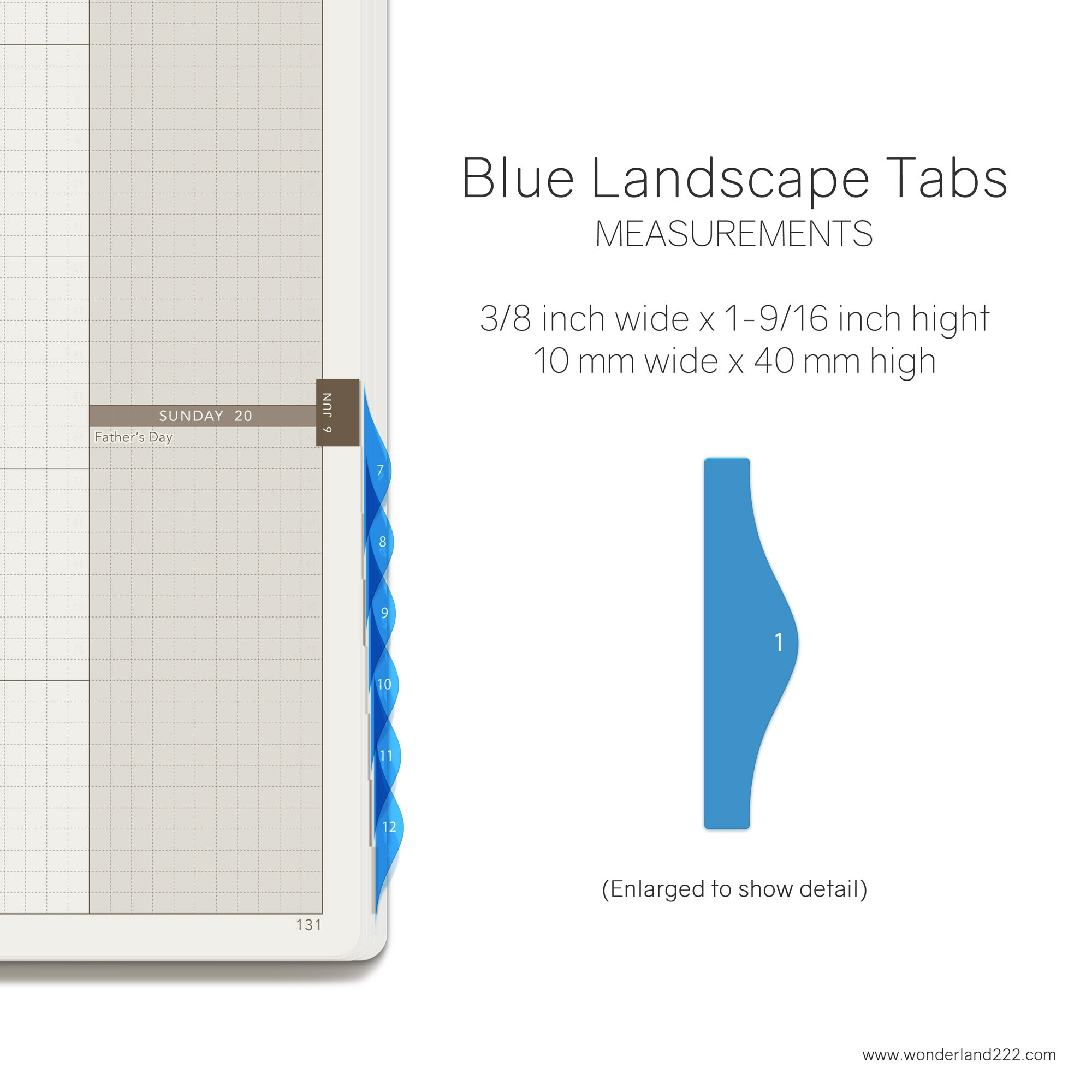 Wonderland 222 Tomoe River Paper Notebooks Planners with HighTide Landscape Monthly Index Tabs Blue Transparent