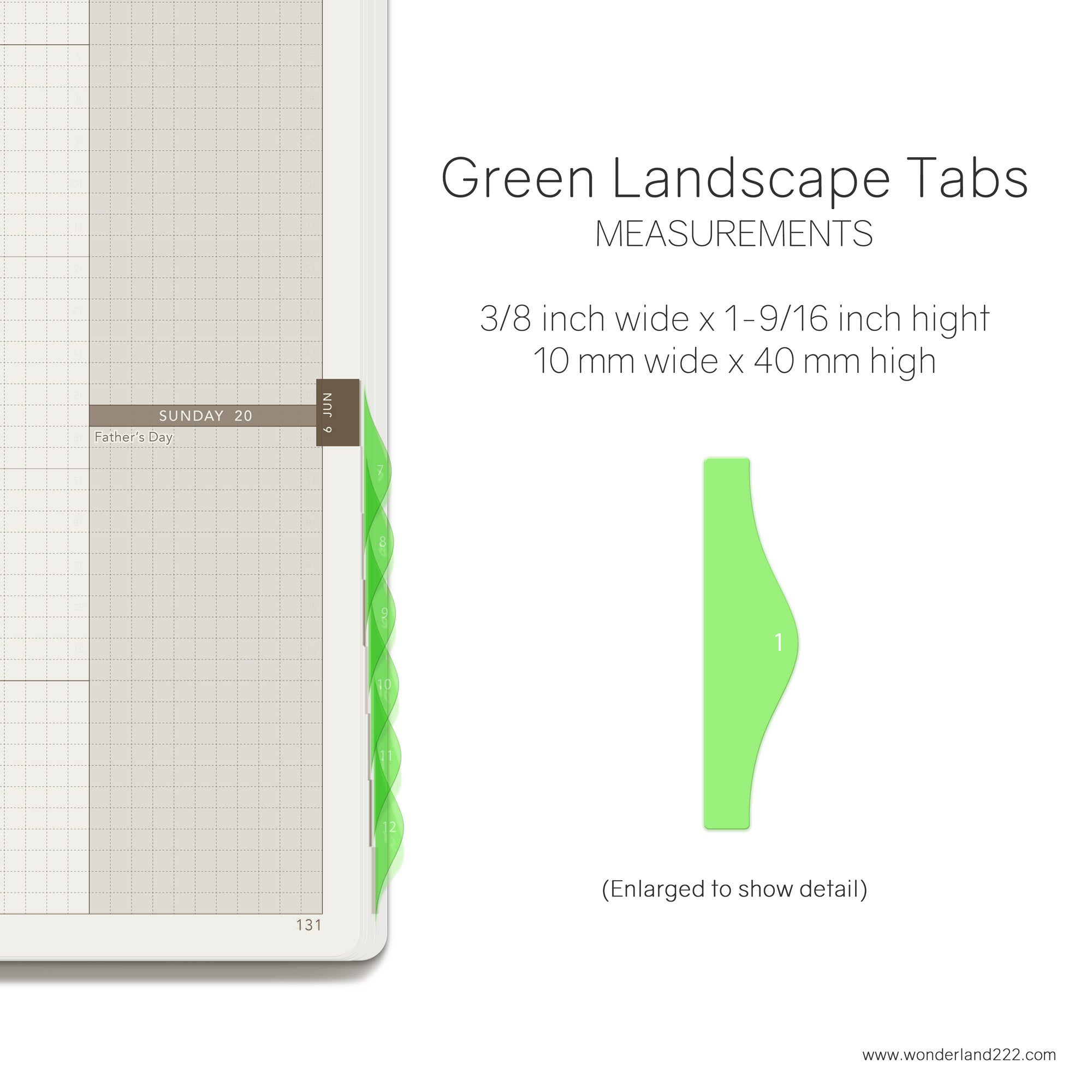 Wonderland 222 Tomoe River Paper Notebooks Planners with HighTide Landscape Monthly Index Tabs  Green Transparent