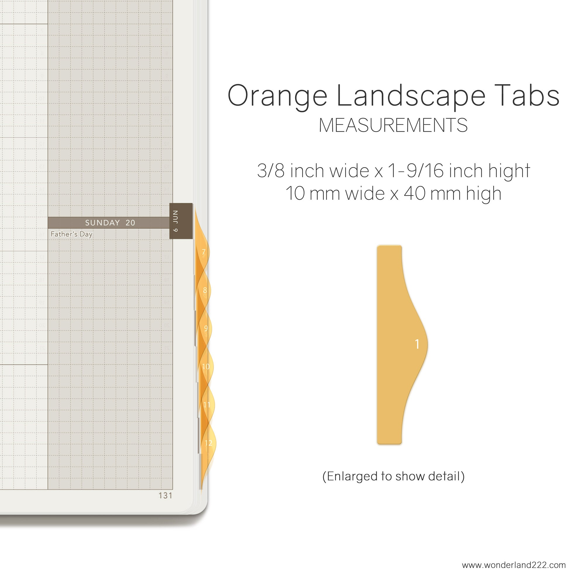 Wonderland 222 Tomoe River Paper Notebooks Planners with HighTide Landscape Monthly Index Tabs Orange Transparent