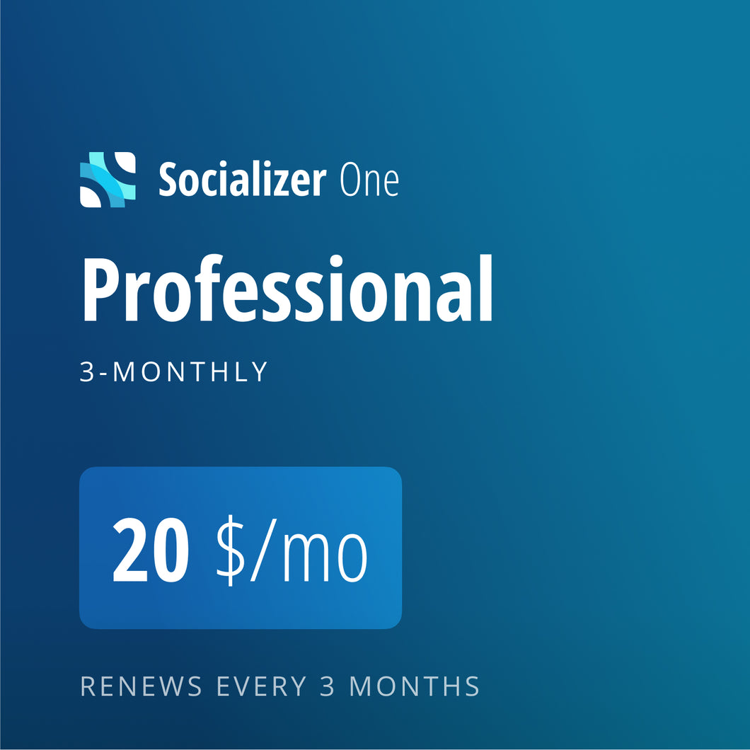Socializer Professional 3*