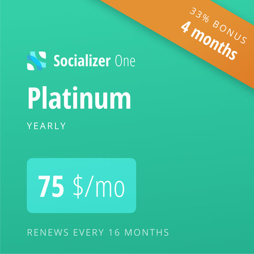 Socializer Platinum 12+4*