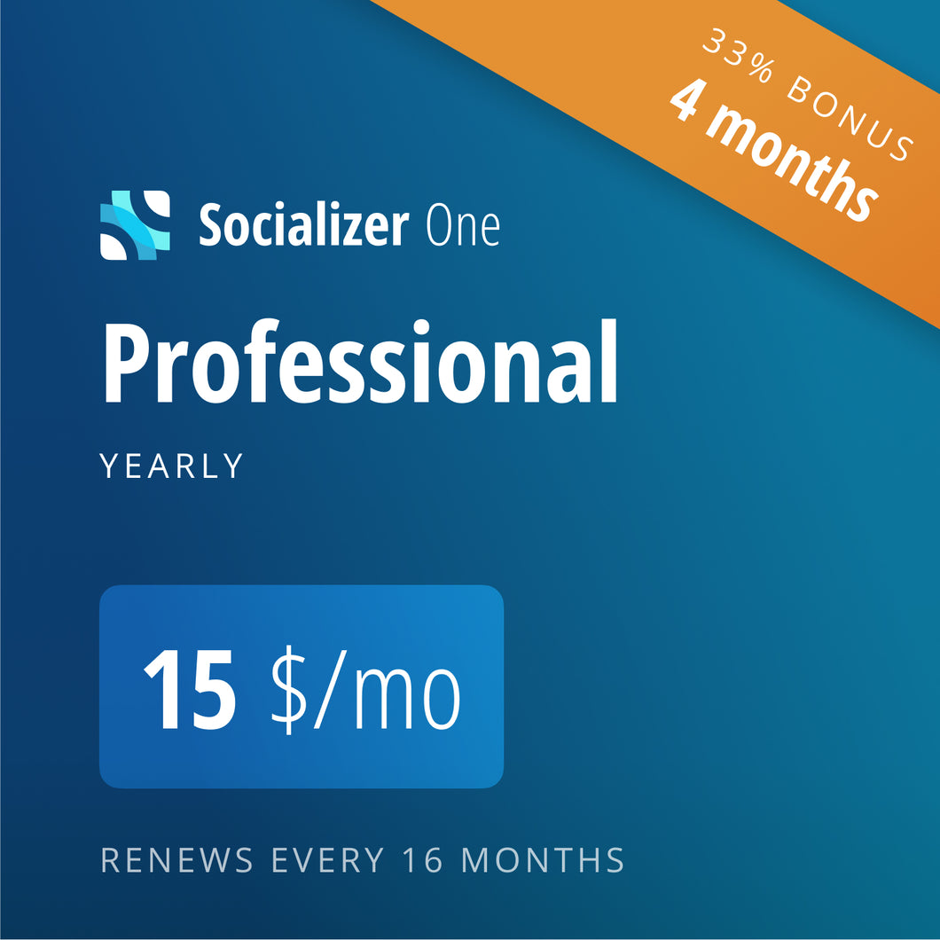 Socializer Professional 12+4*