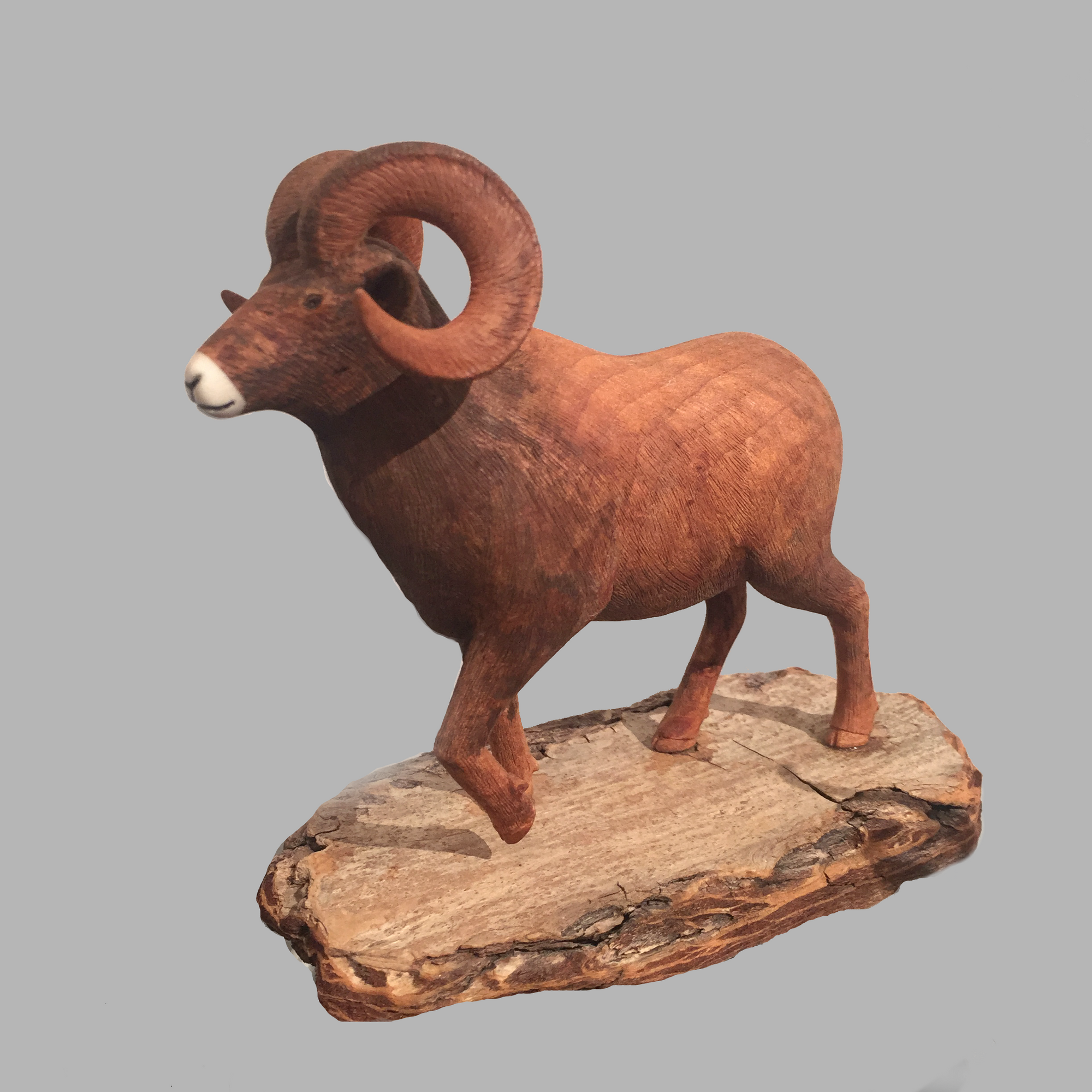 Bighorn Sheep Miniature Animal wood carving by Salt Spring Island artist Jim Dearing