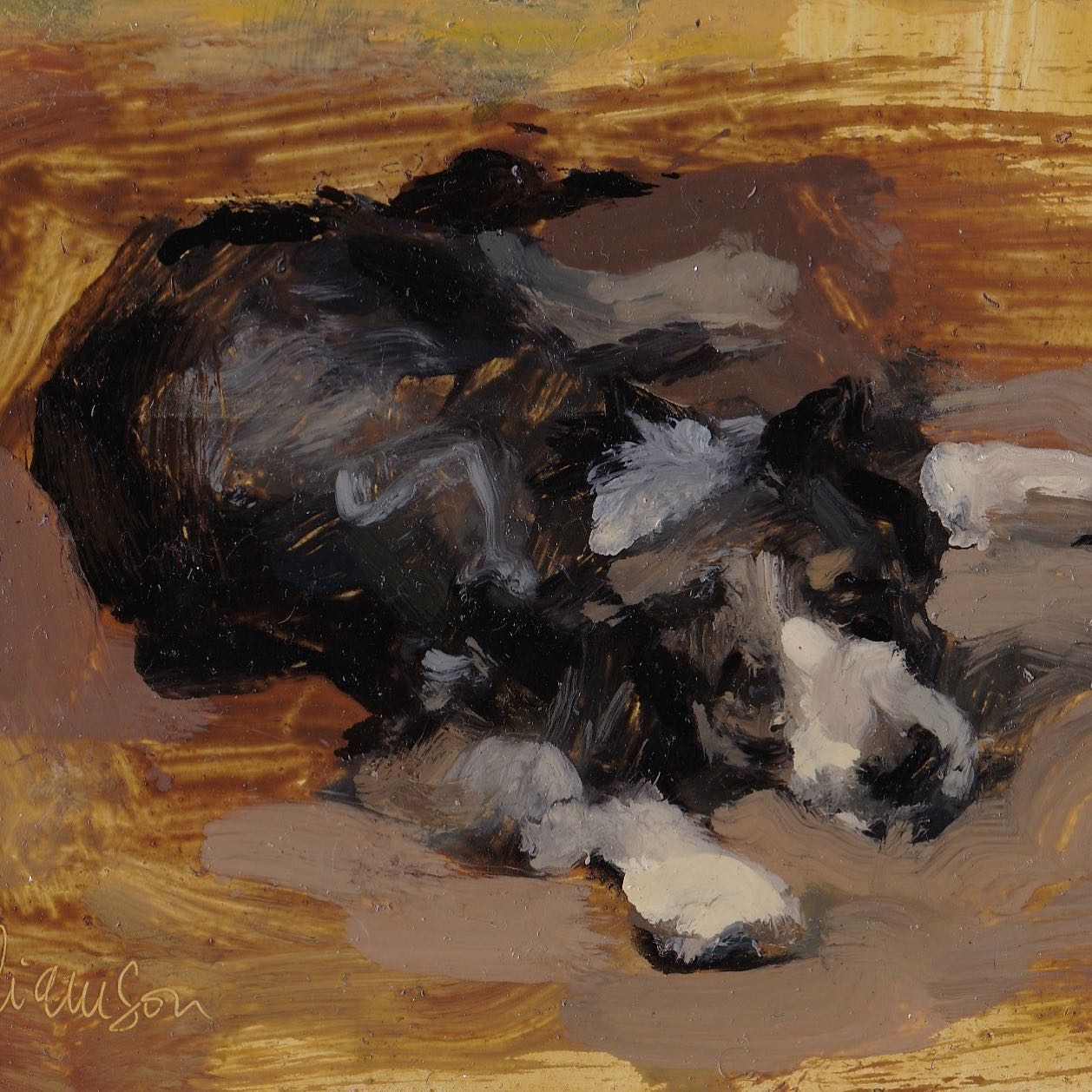 dog waiting oil on board by mel williamson salt spring island artist featuring boarder collie
