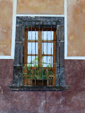 """Mexican Window with Plant"""