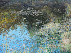 """Pond Reflections"""