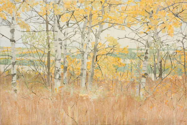 """Autumn Aspens"""