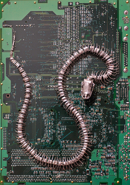 """Snake"" Circuit Board Sculpture"