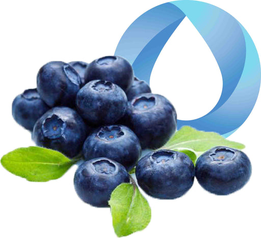 blueberry transparent final