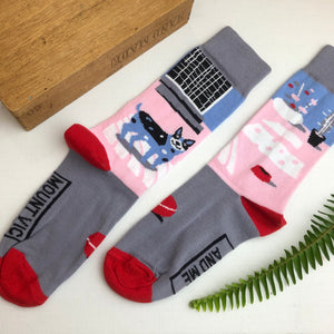 Cattle dog socks