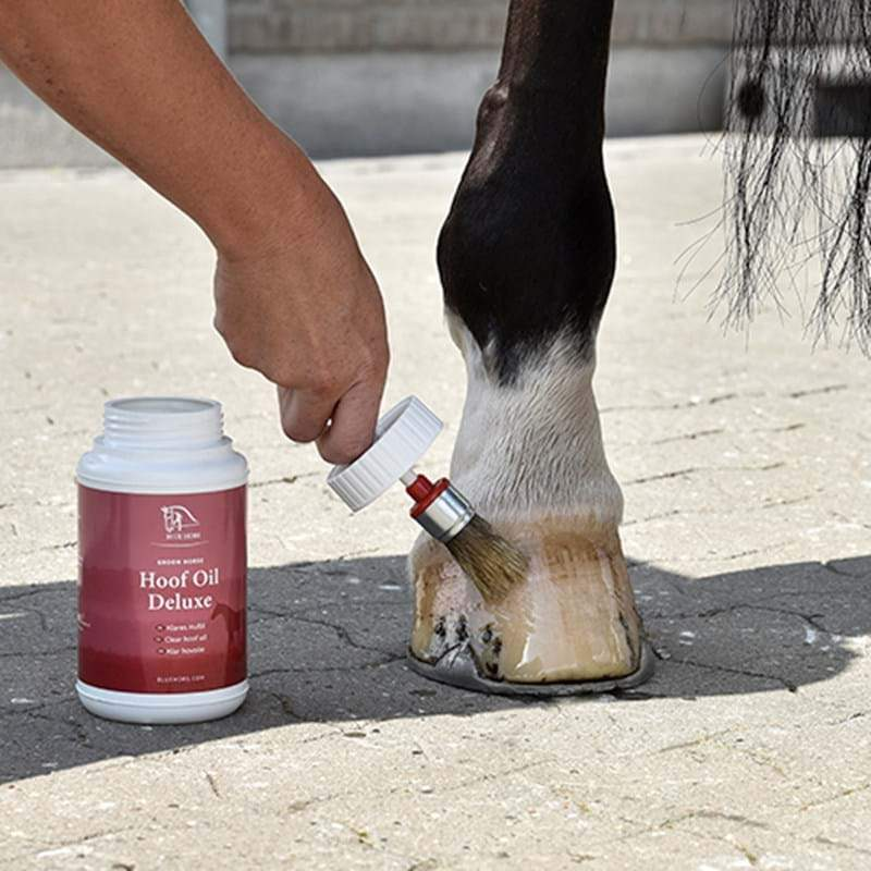 Blue Hors Care Hoof Oil Deluxe 450 ml - Chia de Gracia FI