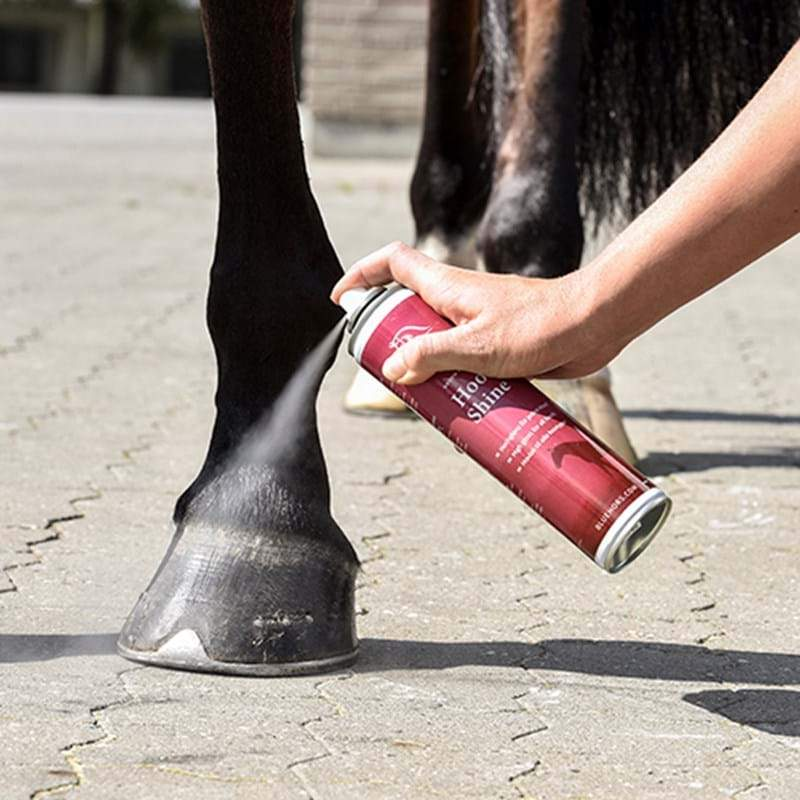 Blue Hors Care Hoof Shine-kaviolakka 300 ml - Chia de Gracia FI