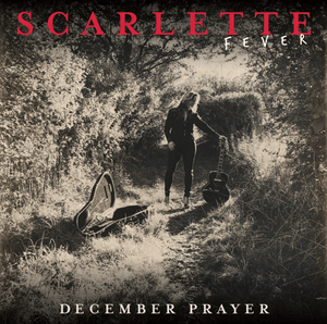 The Scarlette Christmas Busker Bundle