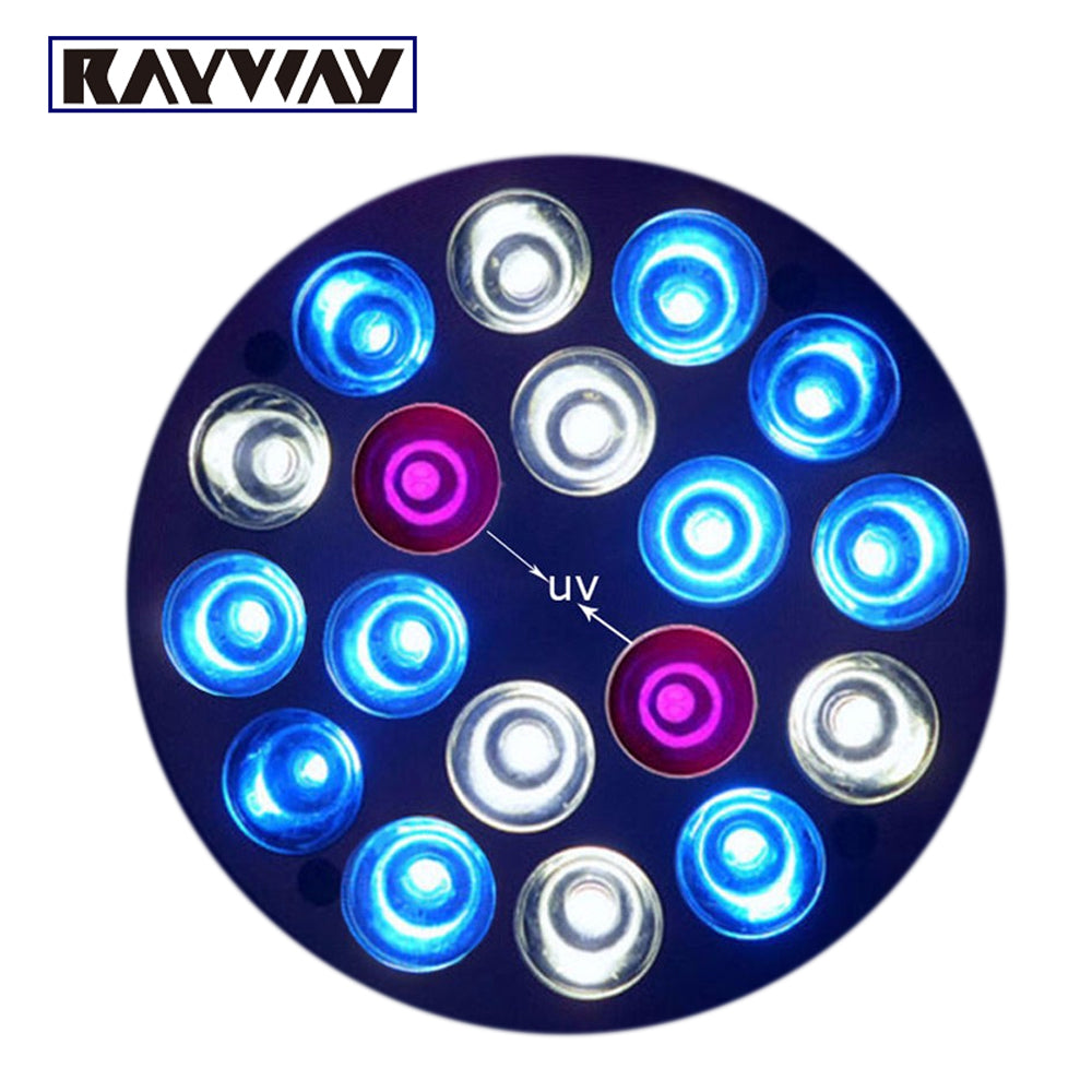 RAYWAY E27 Plants Grow Light Bulb - DojoGrow- Tents & Lights