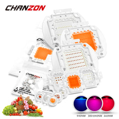 Chanzon High Power Led Chip 100W Full Spectrum Plant Grow Light (380nm-840nm / 3000mA / DC 30V-34V / 100 Watt) for DIY Hydroponic Growing - DojoGrow- Tents & Lights