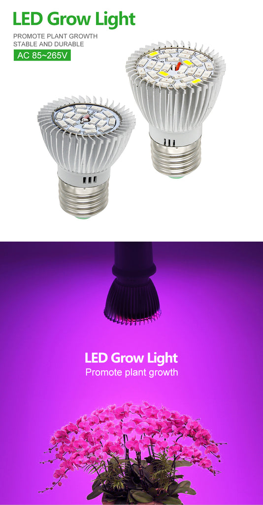 Full Spectrum 28W E26 LED Grow Light Bulb - DojoGrow- Tents & Lights