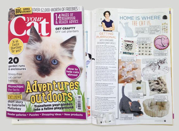 Interview for Jinny in Your Cat Magazine