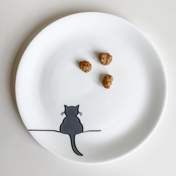 Cat Treats on a Cat Plate