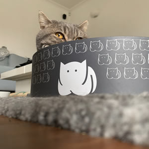 Pebbles and CatLoaf Cat Scratcher Bed