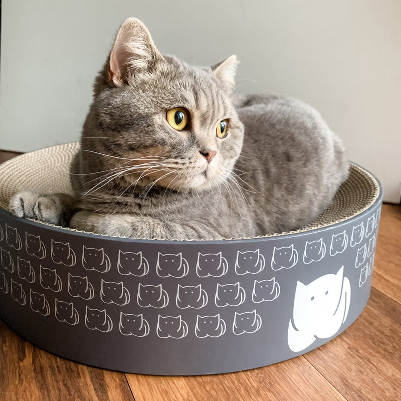 CatLoaf Cat Scratcher Bed with Pebbles