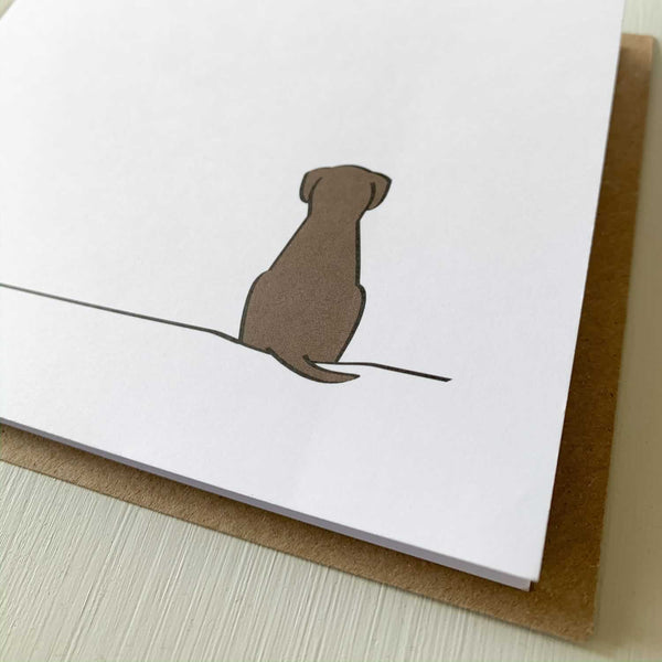 Sitting Dog Cards, Pack of Four