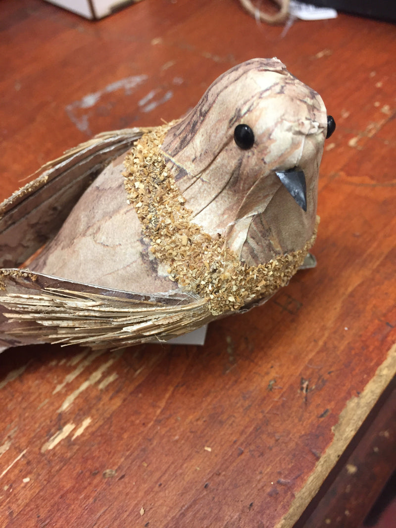 brown clip on bird