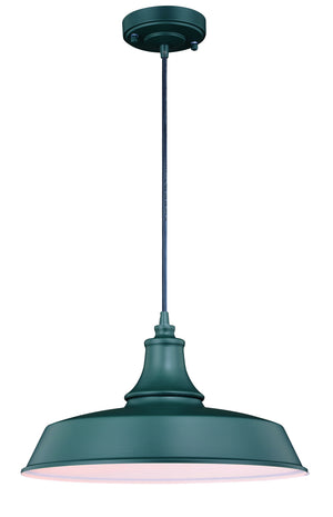 Vaxcel - T0485 - One Light Outdoor Pendant - Dorado - Hunter Green w/ Inner White
