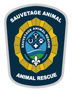 Sauvetage Animal Rescue