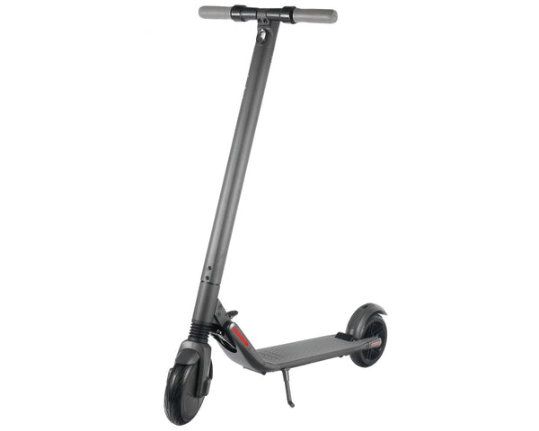 Lightweight Easy Fold Segway Electric Scooter FD