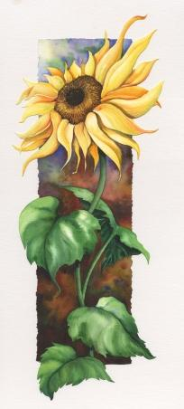 Sunflower - Miniature