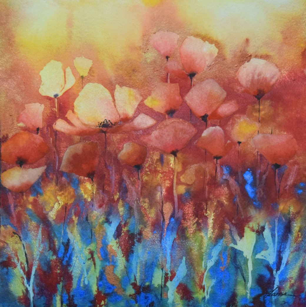 A Passion For Poppies