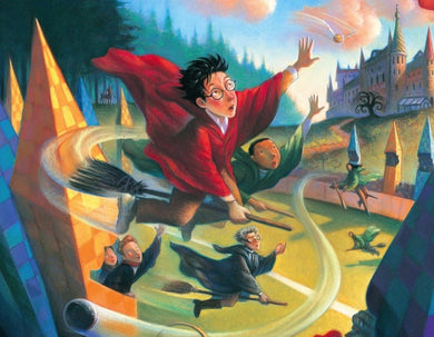 Harry Potter Quidditch- 1000pc