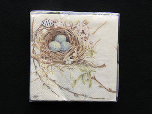 Robins Egg Nest Napkins 20pk