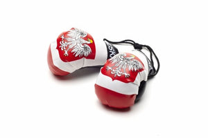 Poland boxing gloves