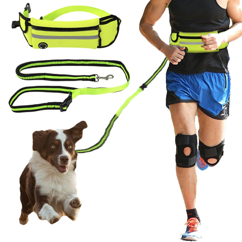 THE BARKING DOG Running Buddies Waist Bag with Leash - The Barking Dog Market