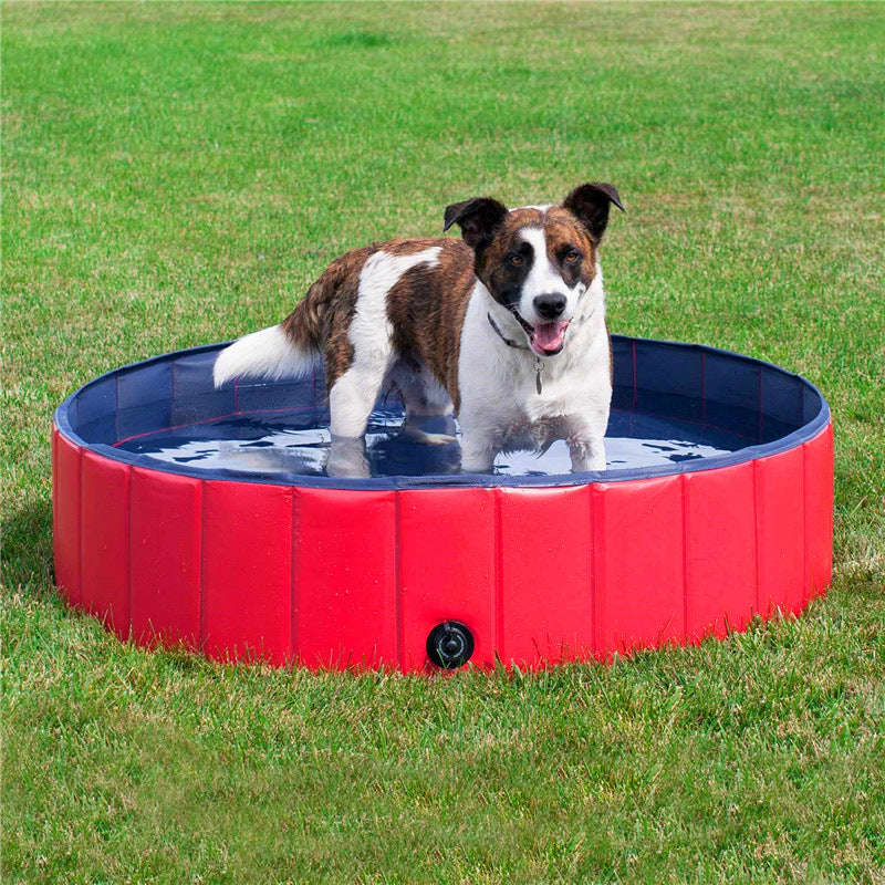 THE BARKING DOG Splash Pool