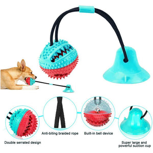 THE BARKING DOG Suction Cup Tug Toy PetCare - The Barking Dog Market