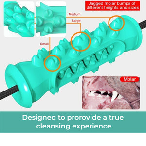 THE BARKING DOG Double Suction Cup Toothbrush & Tug Toy - The Barking Dog Market