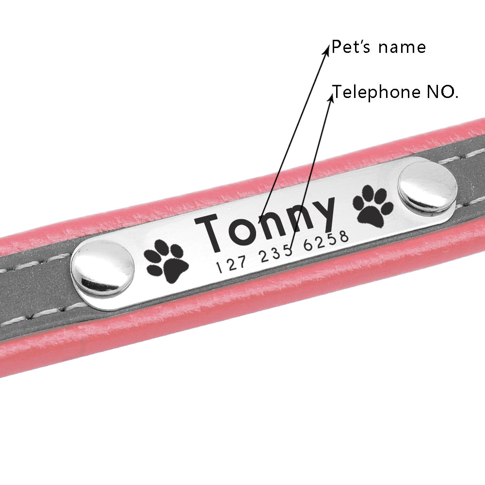 The Barking Dog Personalized Reflective Collar - The Barking Dog Market