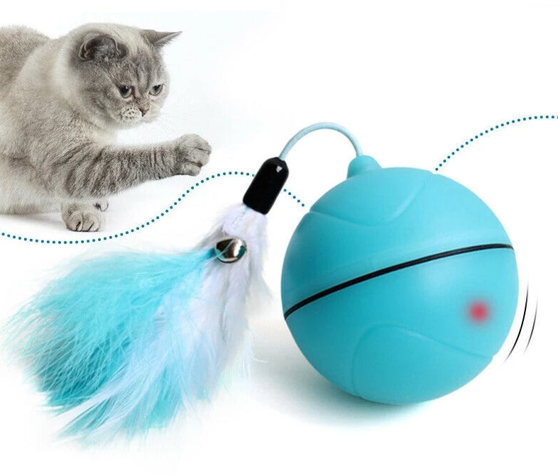 BUSY CAT Rechargeable LED Rolling Cat Ball Toy - The Barking Dog Market