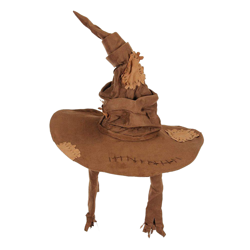 Harry Potter Hogwarts Sorting Hat