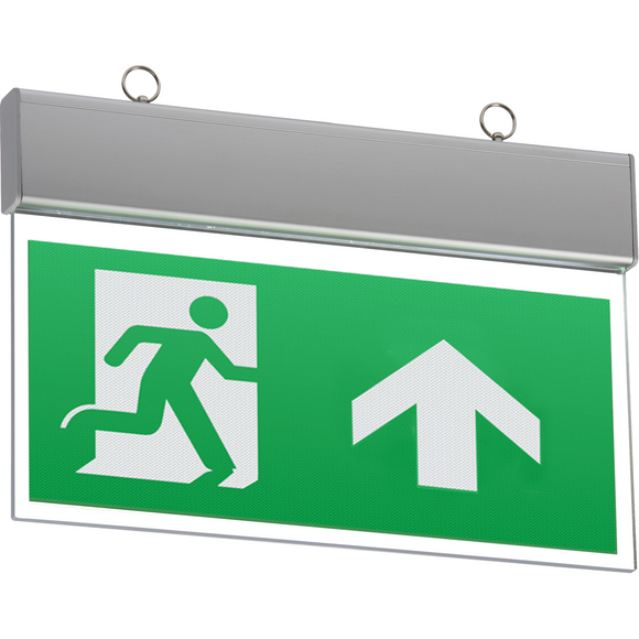 LED Emergency Exit Sign (Maintained/Non-maintained) (EMSWING)