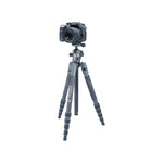 VEO 2 S 235CB  Carbon Travel Tripod/Monopod with Ball Head - Rated at 13.2lbs/6kg