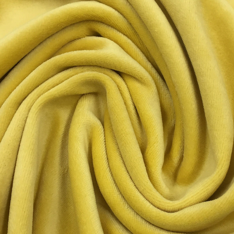 Dijon Cotton Velour